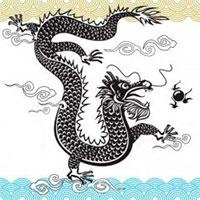 Общая астрология: черная водная змея
